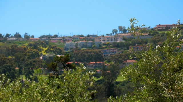 View of Hillside Homes